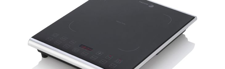 Fagor 1800W Portable Induction Cooktop
